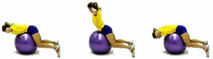 stability-ball-back-extension