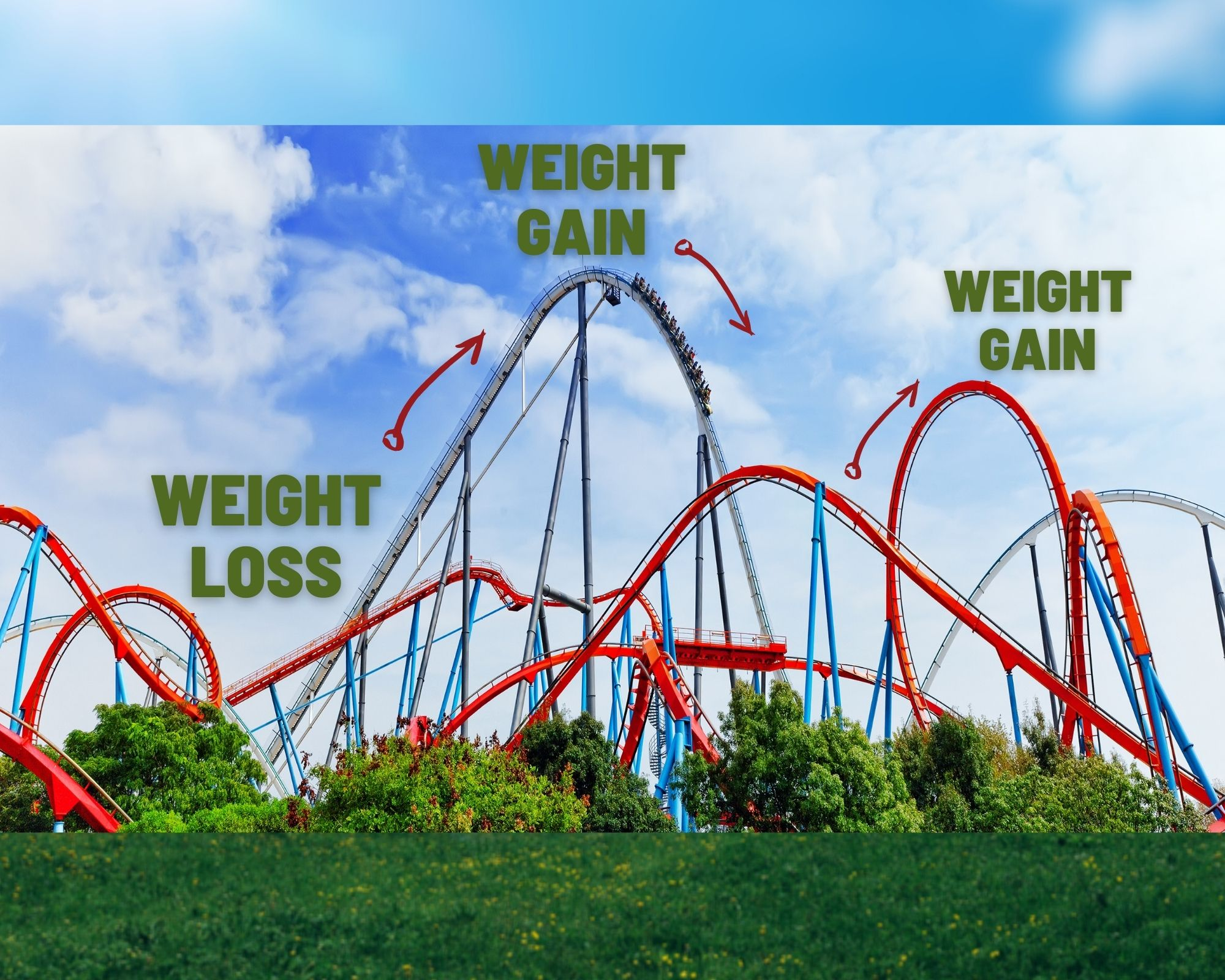 A roller coaster - implys the importance of balance