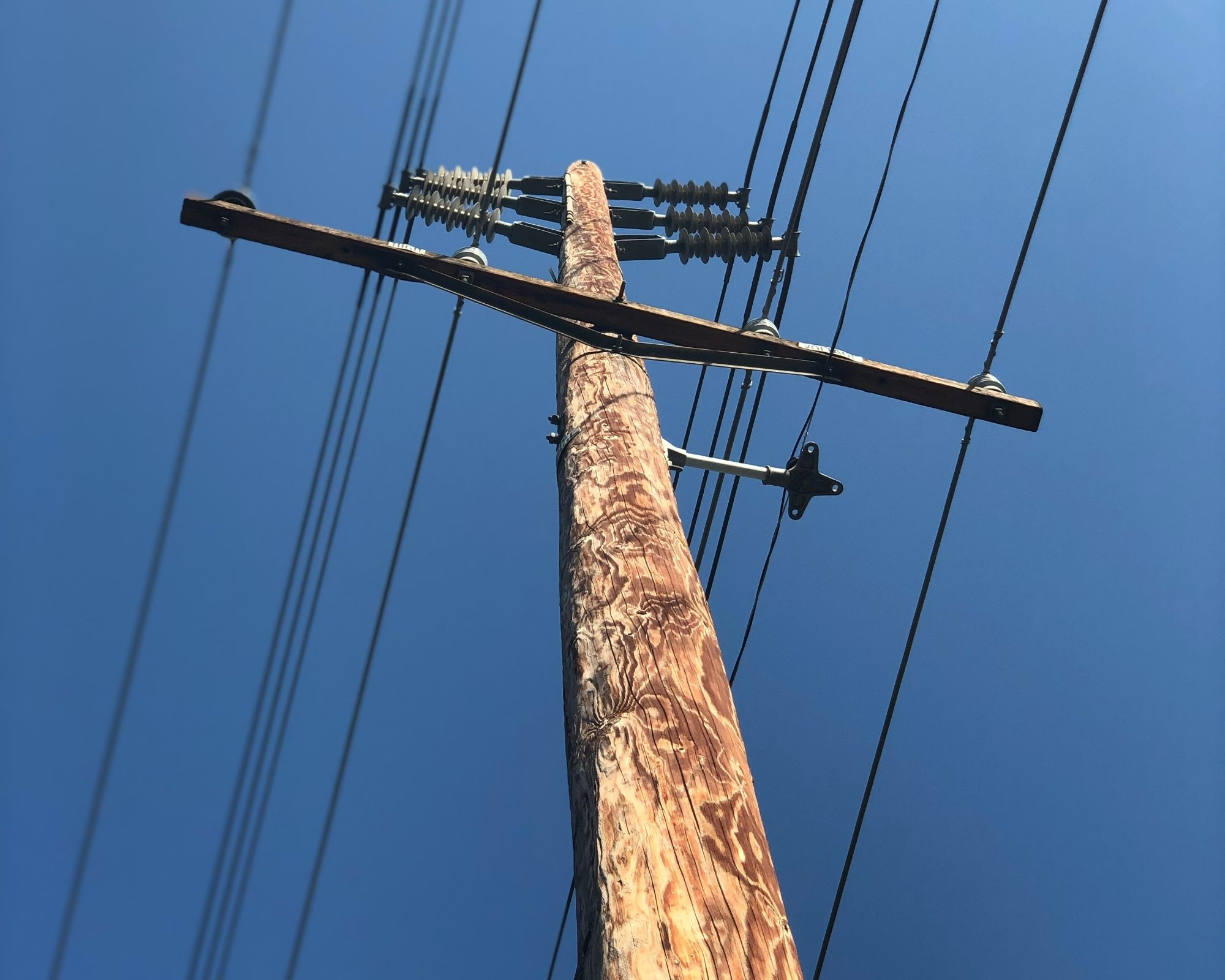 Telephone Pole - As example of hip muscle psoas