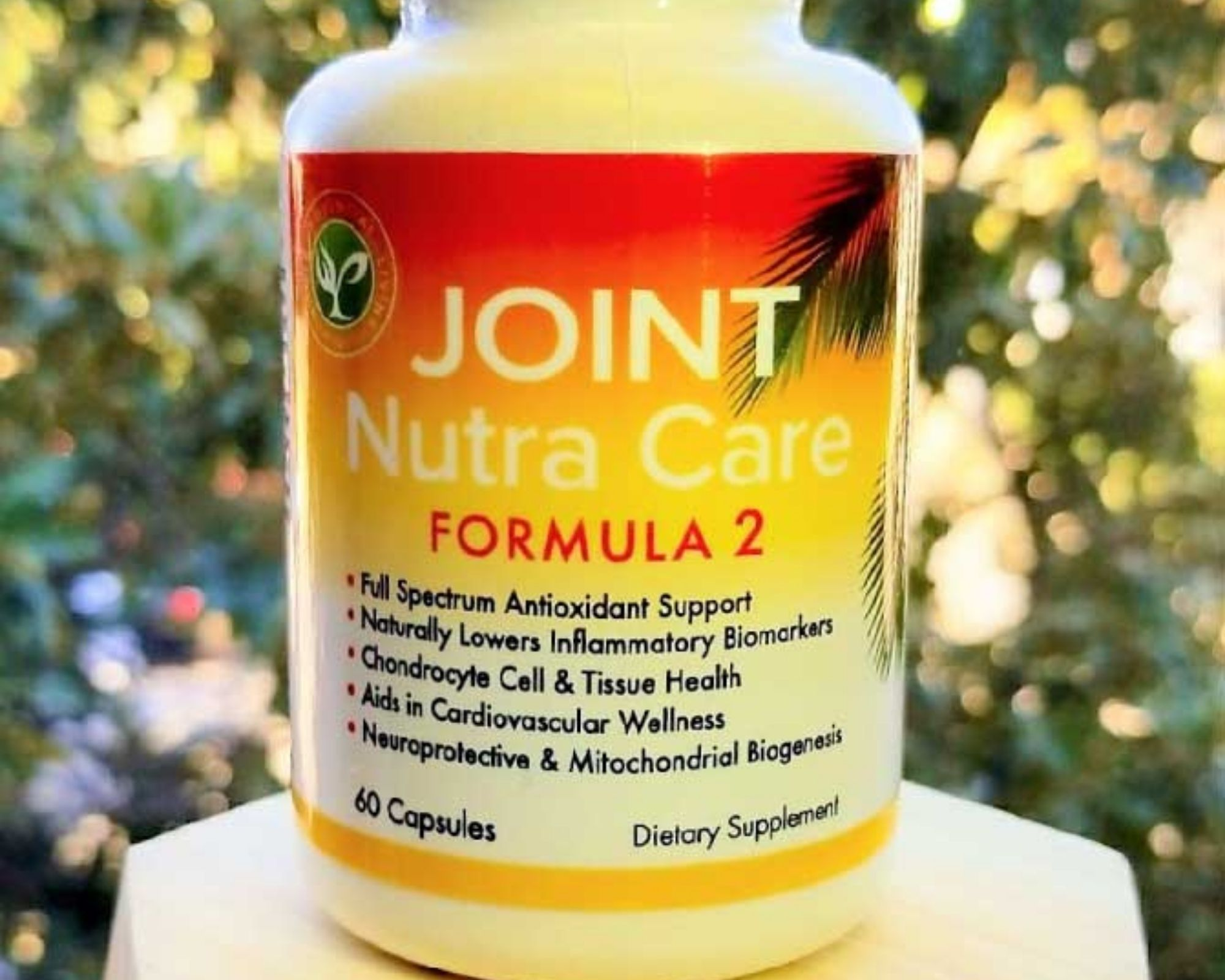 Joint Nutra Care Bottle - Nutrients in pill form